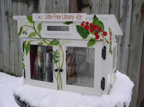 little library 002